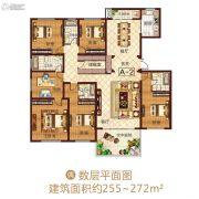 龙之光・国际中心6室2厅4卫0平方米户型图