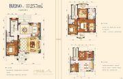 邵东碧桂园5室2厅4卫257平方米户型图