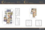 国贸仁皇4室2厅2卫132平方米户型图