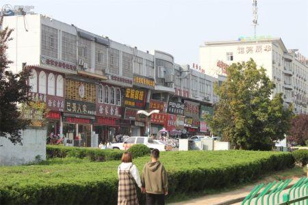 新华九龙首府