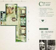 绿朗时光2室2厅1卫87平方米户型图