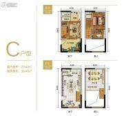 重庆黄金嘉年华1室1厅2卫29平方米户型图