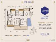 健康花城4室2厅2卫143平方米户型图