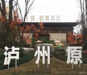 鸿通翡翠滨江实景图