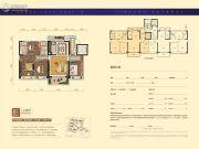 碧桂园・凤凰城4室2厅2卫140平方米户型图
