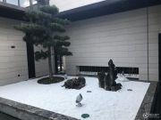 保辉海悦城实景图
