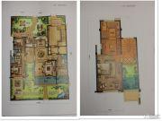 新希望・白麓城5室3厅5卫230--270平方米户型图
