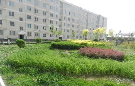 新世纪花园B区