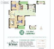 新芒果双糖公寓3室2厅2卫113平方米户型图