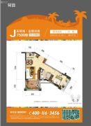 碧桂园珊瑚宫殿1室2厅1卫51平方米户型图