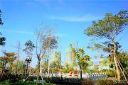 中泰上境外景图