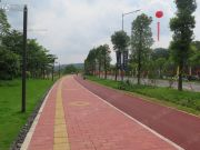 广州绿地城配套图