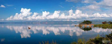 抚仙湖畔樱花谷