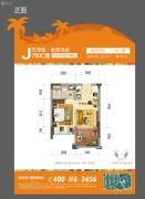 碧桂园珊瑚宫殿1室2厅1卫35--36平方米户型图