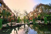 泰和兴龙湾实景图
