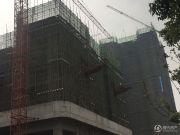 蔡家中央大街实景图