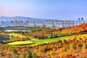 格林威治城金山谷外景图