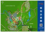 碧桂园润杨溪谷规划图