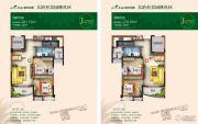 碧桂园・城市花园2室2厅1卫79--81平方米户型图