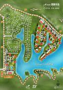 碧桂园凤凰半岛(四会)规划图