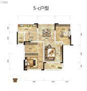 骧龙国际2室2厅1卫110平方米户型图