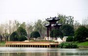 中海运河丹堤配套图