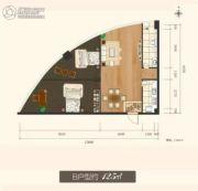 东瑞怡ONE公寓2室2厅1卫45--125平方米户型图