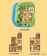江南一品 别墅789平方米户型图