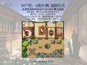 世界美墅2室21厅0卫68平方米户型图