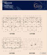 碧桂园凤凰城5室2厅0卫413平方米户型图