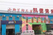 泰禾红御实景图