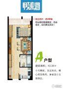 甲壳虫公馆1室1厅1卫43平方米户型图