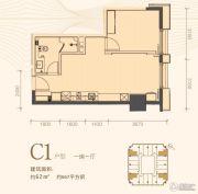 利是达星际广场1室1厅1卫62平方米户型图