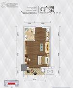 英祥・春天广场1室1厅1卫35平方米户型图