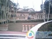 龙湖花千树外景图