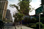 绿城百合公寓三期外景图