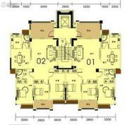 香槟公馆3室2厅2卫144--146平方米户型图