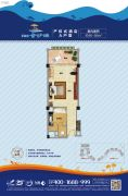 碧桂园金沙滩1室1厅1卫46--56平方米户型图