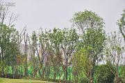 太行瑞宏朗诗金沙城外景图