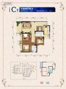 邦泰・国际社区(北区)3室2厅2卫100平方米户型图