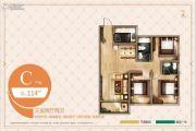 臻园阳光3室2厅2卫114平方米户型图