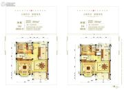 揭阳碧桂园360平方米户型图
