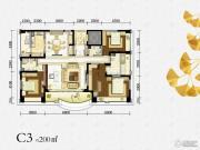 绿地锦天府0室0厅0卫200平方米户型图