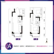 乔布斯公馆2期2室2厅2卫45平方米户型图