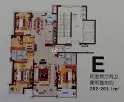 中洋高尔夫公寓4室2厅2卫202--203平方米户型图