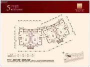 金港广场147--151平方米户型图