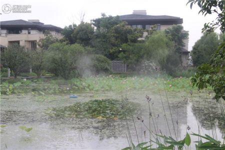 碧桂园・滨湖湾