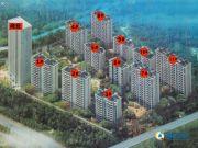碧景华庭规划图