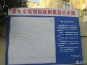 苏源聚福园 小高层规划图
