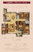 雷州碧桂园5室2厅4卫251平方米户型图